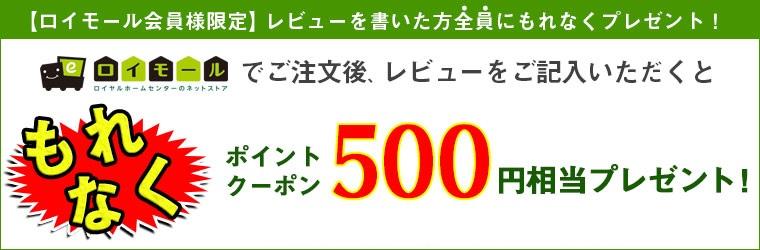 レビューを書いた会員様限定で500円クーポンプレゼント!