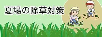 夏場の除草対策