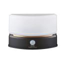 ELPA もてなしライト 人感センサー コンパクトタイプ HLH−2201