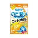 快適ガード のど潤いぬれマスク ゆずレモンの香り レギュラー 3回分
