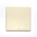 ブライト&アタック 100角 平タイル P10−200 1枚