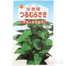 緑茎種 つるむらさき