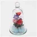 ボトルフラワー ベルグラス バラ Le Bell