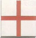 マイゾックス アースプレート十字貼付