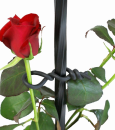 バラ用やわらかバンド φ2.5mm×3m