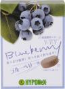 ハイポネックス 錠剤肥料 ブルーベリー用 30錠