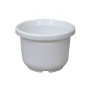 輪鉢F型 4号 ホワイト