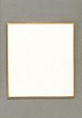色紙画仙 ミニ シキシ−5S1