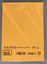 マルチカラーペーパー クリームB5 100P