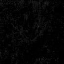 東リ 複層ビニル床タイル ロイヤルストーンPST793