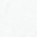 東リ 複層ビニル床タイル ロイヤルストーン PST790 14枚入