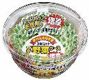 プチ野菜ケース徳用 9号