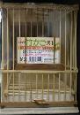 竹かご 尺1 1個