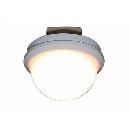 スワン LED小型照明電球色 CE−1007