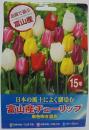 富山産チューリップ 15球 単色咲き混合