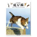 壁掛けカレンダー 五十嵐健太 飛び猫2017カレンダー