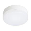 LED小型ライト 60W相当 昼白色 TN−CLM−N