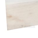 普通ラワン合板 T2 約2.5mm 3×6尺(100)