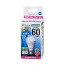 【ロイサポート用・作業費別・処分費別】E-Bright 小型LED電球 ミニクリプトン 60形相当 E17 昼光色