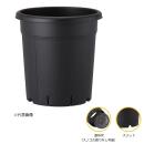 果樹鉢 245型 ブラック