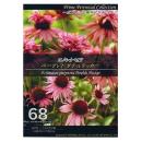 【68】 エキナセア パープレア ダブルデッカー