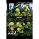 【208】 アルセア チェイターズ イエロー