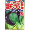紫チンゲン菜
