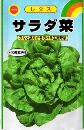レタスサラダ菜
