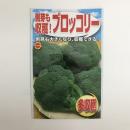 側枝も収穫 ブロッコリー