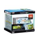 GEX グラステリア 300 6点セット